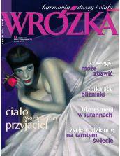 Wróżka 11/2005