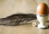 Jajko: dlaczego jest doskonałym lekiem?