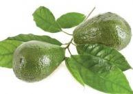 Leki z bożej apteki: awokado