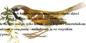 erotyka, ptaki, wróbel, biologia zwierząt, inteligencja erotyczna
