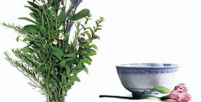 homeopatia, zielona apteka, fitoterapia, leki naturalne, terapie roślinami