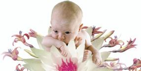 rytuały, lotosowe narodziny, Polinezja, lotos, Clair Lotus Day, placenta, łożysko