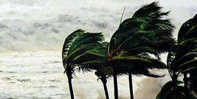 przyroda, Błękitna Planeta, kataklizmy, fale zagłady