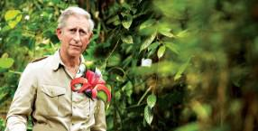 książę Karol, ekolog, GMO