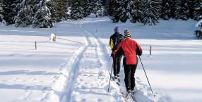 góry, zima, sport, narty, bieganie, biegówki