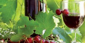 magiczna kuchnia, wiśnie, konfitury, przetwory, chutney