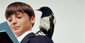 ptaki, Dorota Sumińska, dzieciństwo, czereśnie