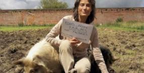 zwierzęta, ekologia, mięso, świnie, markiza Tracy Worcester, ochrona zwierząt