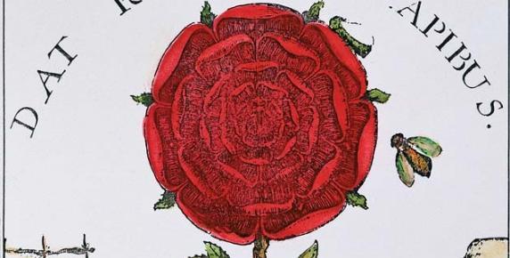 """""""Dat rosa mel apibus"""" (""""Daje miód pszczoły róża"""") – słynna dewiza różokrzyżowców pojawia się w tytule pracy """"Summum bonum"""" alchemika Roberta Fludda z 1629 r."""