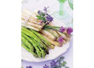 Szparagi klasyczne – odmiana francuska