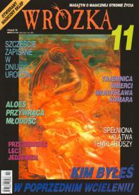 1998/11 11/1998