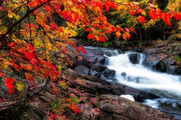 Magiczny kalendarz: wrzesień