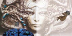 inkarnacje, wcielenia, bliźnięta, klonowanie, padaczka, epilepsja, reinkarnacja