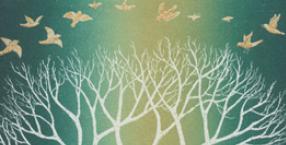 drzewa, kąpiel w żywicy, olej jałowcowy