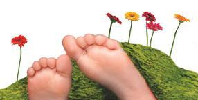 przesilenie, energia życiowa, zioła, przesilenie wiosenne, wiosna
