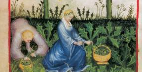 choroby, uzdrawianie, zioła, Sebastian Kneipp, zielarz, leczenie