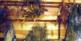 zioła, czarownicy, zioła ze Szklarskiej Poręby, leki ziołowe