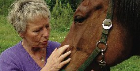 Kirsten Helming, kamienie, terapie, kryształy, mowa zwierząt