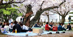 gaijin, Japonia, kultura, Tokyo, Kioto