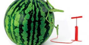 Warzywa podwyższonego ryzyka