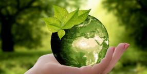 Ziemia, natura, ekologia, harmonia, eko-wybór, marnotrawstwo, freeganizm