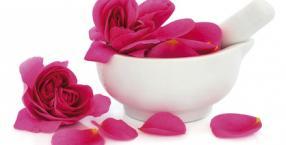 Kwiaty na miłosną ucztę