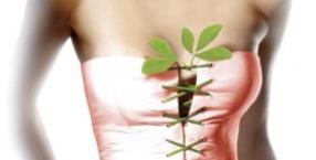 uroda, natura, piersi, biust, kobieta, maseczka, dekolt
