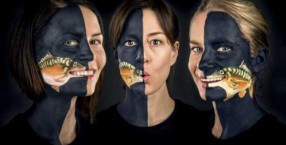 """W akcję pod hasłem """"Nie baw się w kata, kup karpia w płatach"""" zaangażowały się m.in. Magda Kumorek, Maja Ostaszewska i Magdalena Cielecka. Ich twarze zamienione w pyszczki karpia pojawiły się na billboardach."""