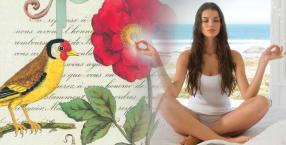 modlitwa, zdrowie, ćwiczenia, techniki medytacji, medytacja, skupienie, naturalne sposoby