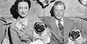 """Korzystałam z książki """"Ta kobieta. Wallis SiWallis Simpson i Edward VIII oraz mopsy, które zastąpiły im dzieci"""