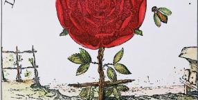 tajemnice, Templariusze, zakon, tajemnica, krzyż, róża, Zakon Różokrzyżowców, Różokrzyżowcy, spisek, AMORC