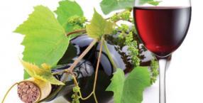 Leki z bożej apteki: wino