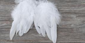 Czy anioły są wśród nas?