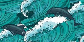 Zwierzę mocy: delfin, zwierzęta mocy