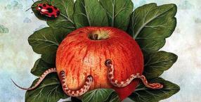 gmo,żywność modyfikowana,żywność,zdrowie,żywienie,dieta,jedzenie
