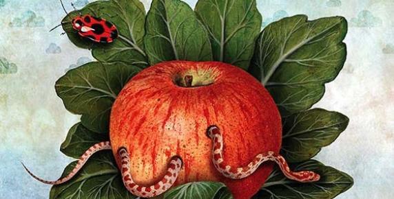 GMO: zdrowe czy szkodliwe?